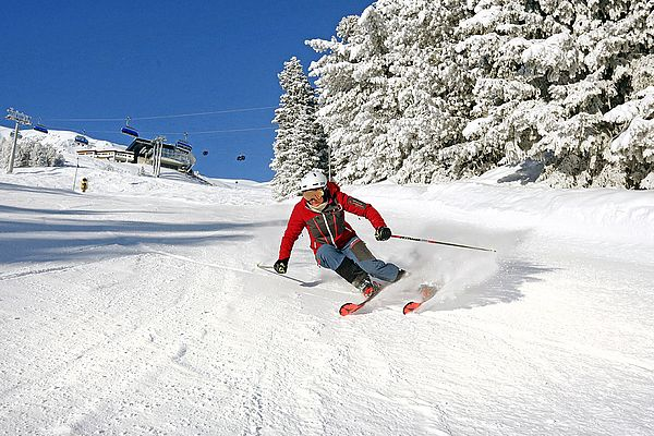 Online ski rental